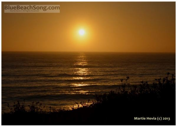 Golden Sunset V © Martie Hevia - WM