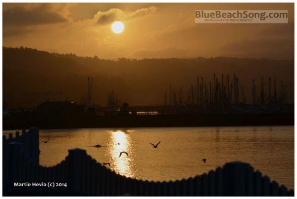 Marina Sunrise IV © Martie Hevia - WM
